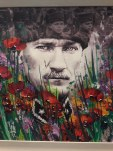 Маковая эллегия потрясающих картин Хикмет Четинкая